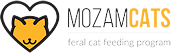 Mozam Cats