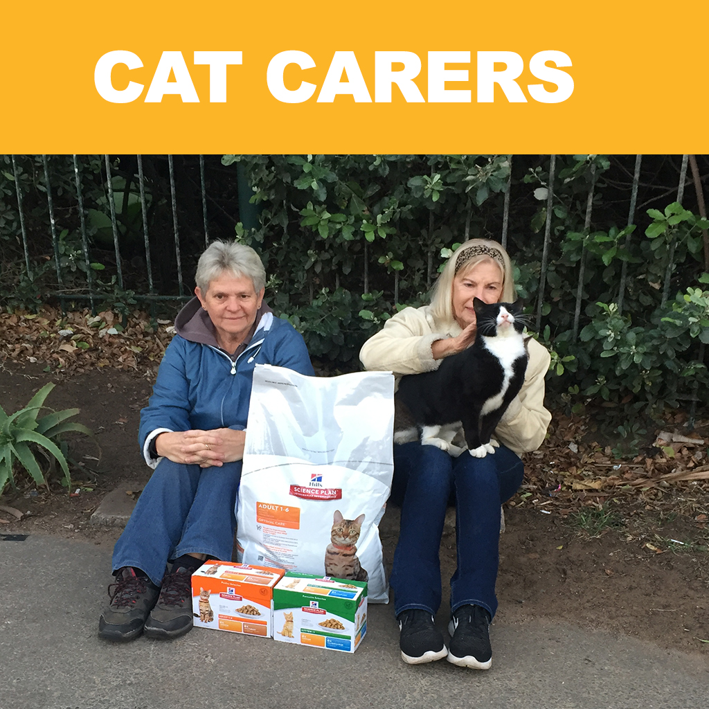 Cat Carers – St Francis Carers of Abused and Abandoned Feral Cats