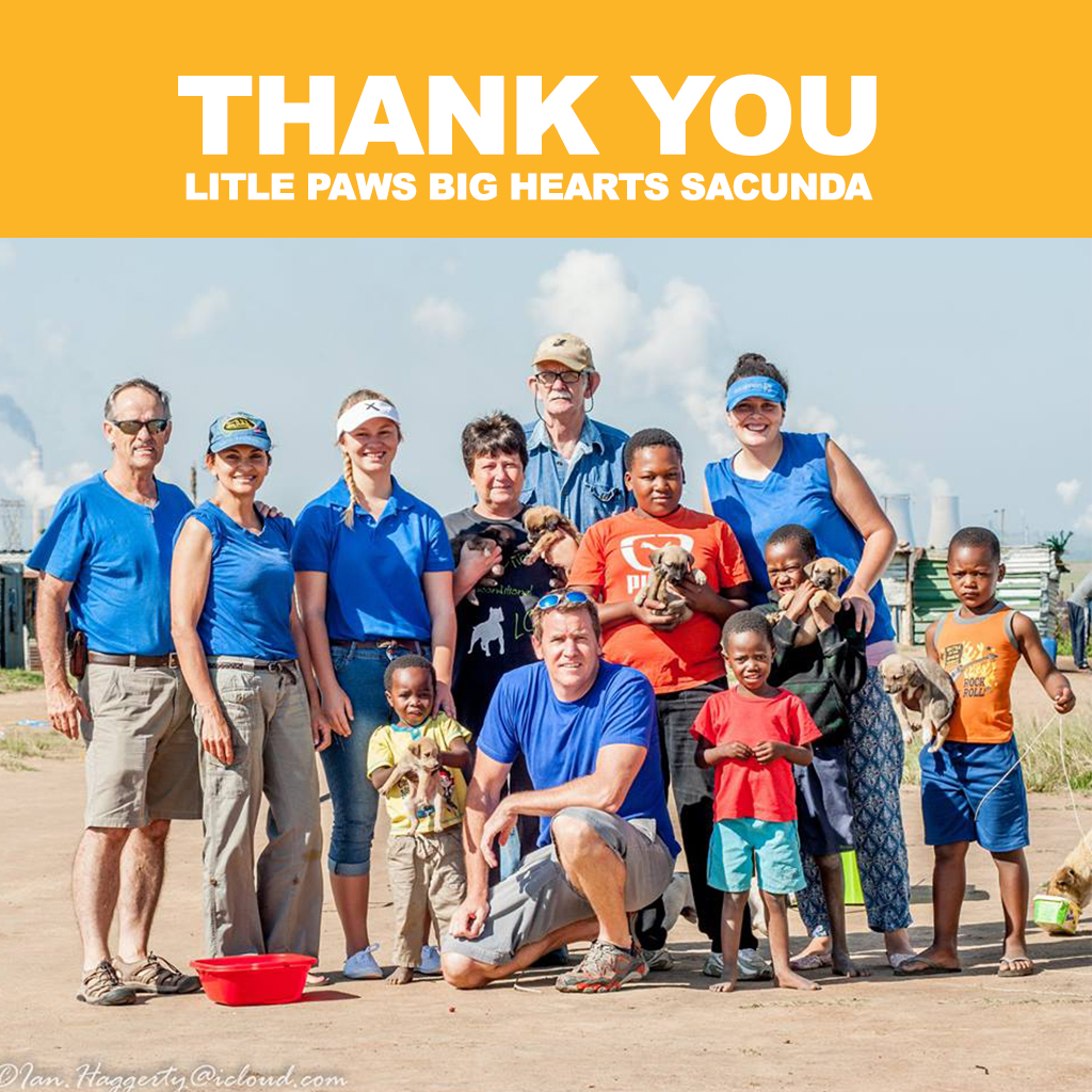 Little Paws Big Hearts Secunda
